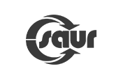 SoftFluent - Client Saur